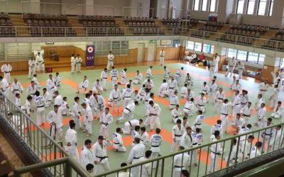 Petit rappel des exercices traditionnels du judo pour s'entraîner !